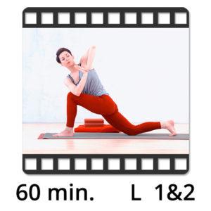 Yoga Video online Detox Flow