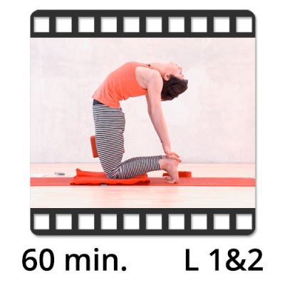 Yoga Video kaufen Download