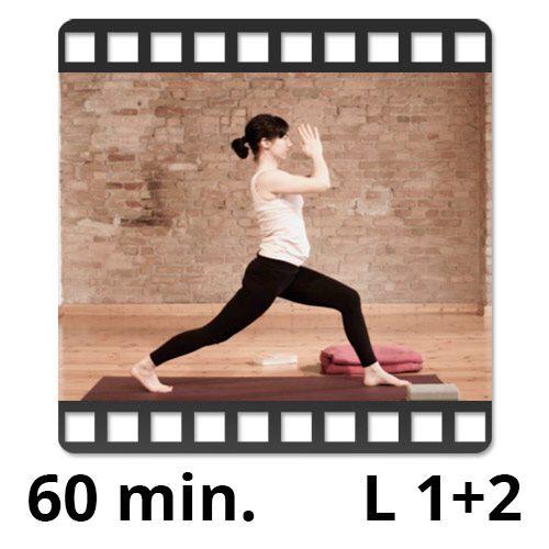yoga video sandra winkens yogafürdich