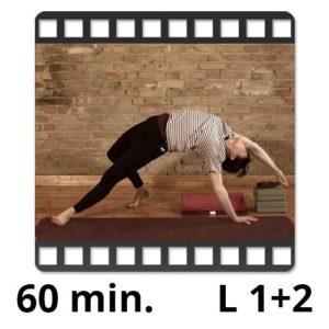 yogafürdich yoga video sandra winkens