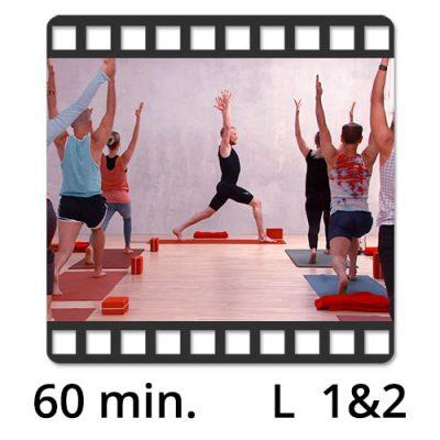 Yoga Video kaufen Fokus stehende Haltungen