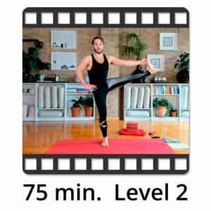 Download Yoga Video Power Vinyasa Flow Level 2 Mate Granic