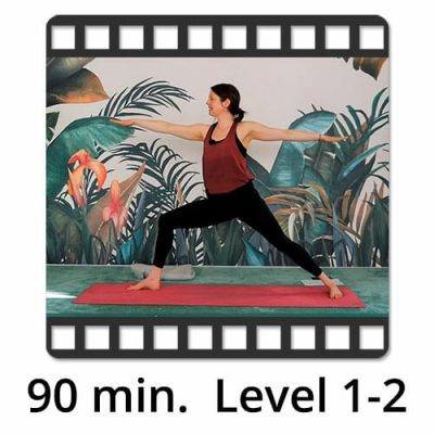 Download Yoga Video Power Vinyasa Flow Level 1-2 Katharina Knoll