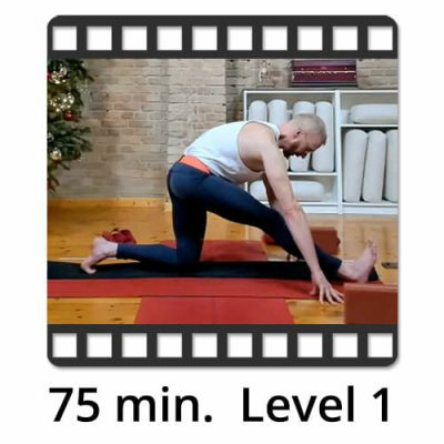 Download Yoga Video Power Vinyasa Flow Level 2 Victor Thiele