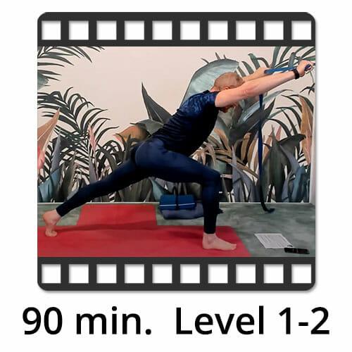 Download Yoga Video Power Vinyasa Flow Level 0-1 Victor Thiele