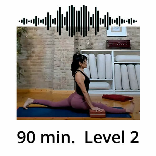 Download Yoga Audio Power Vinyasa Flow Level 2 Lina Alonso