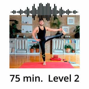 Download Yoga MP3 Power Vinyasa Flow Level 2 Mate Granic