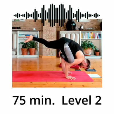 Download Yoga Audio Power Vinyasa Flow Level 2 Mate Granic