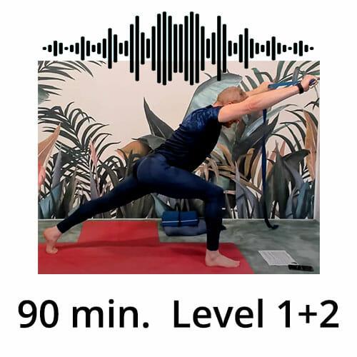 Download Yoga Audio Power Vinyasa Flow Level 1-2 Victor Thiele