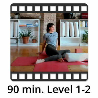 Download Yoga Video Power Vinyasa Flow Level 1-2 Anni Barthel